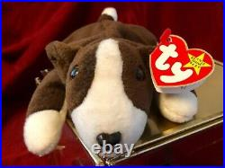 EXTREMELY RARE Vintage 1997 Bruno Beanie Baby with MULTIPLE Swing Tag Errors