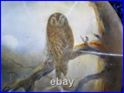 Extremely Rare Grainger Worcester Royal China Works 1902 Hand Painted Owl Plate
